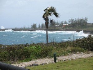 The windswept Cayman Island coast ©NDY
